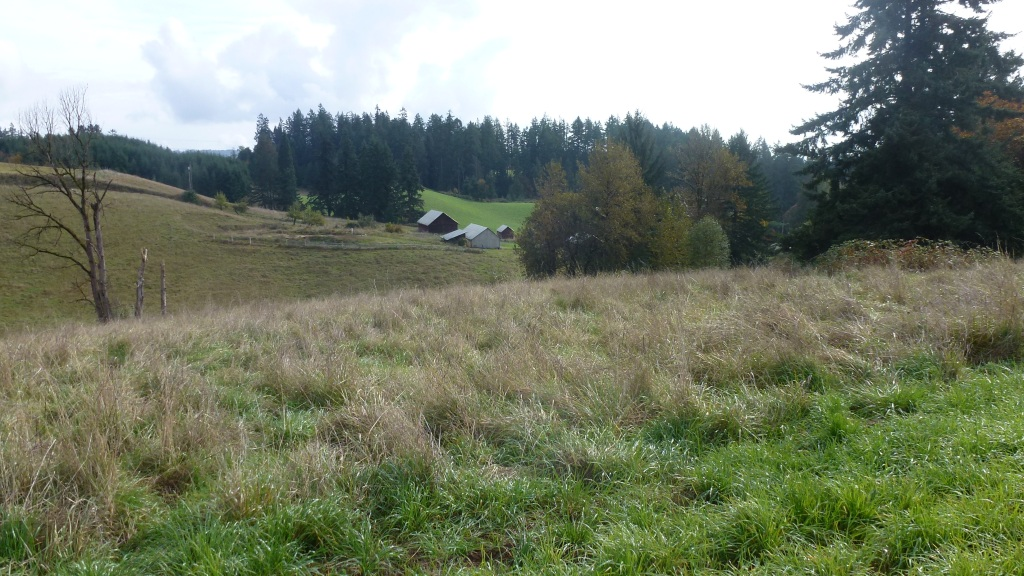 002 Conservation Easement Hillsboro 14151